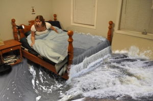 Bed Bugs In Waterbeds